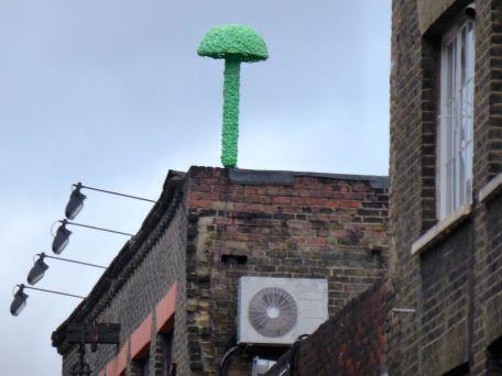 Christiaan Nagel mushroom