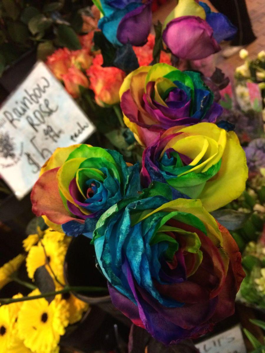 rainbow roses on Granville Island