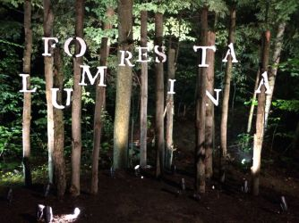 trees sign: Foresta Lumina