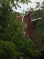 broken tree on roof