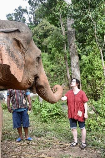 kp feeing elephant bananas