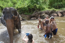 mudbath with elephants