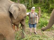 Alex touching elephant