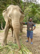 Colin with hand on elephant