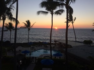 sunset with pool and palm trees