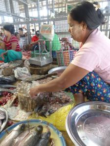 market woman with fish