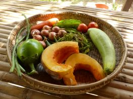 fresh vegetables in wood bowl