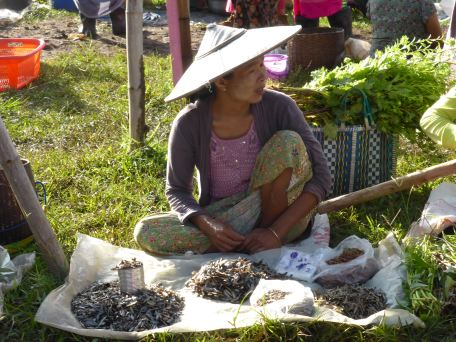 woman selling dried fish