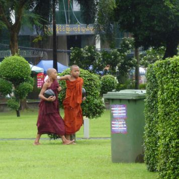 Young monks arm in arm