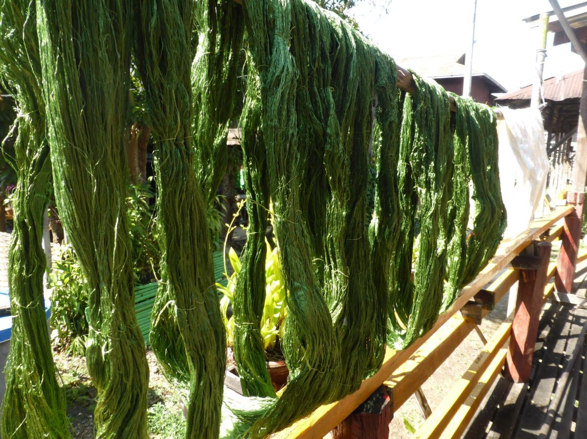 green dyed lotus fibre drying in the sun