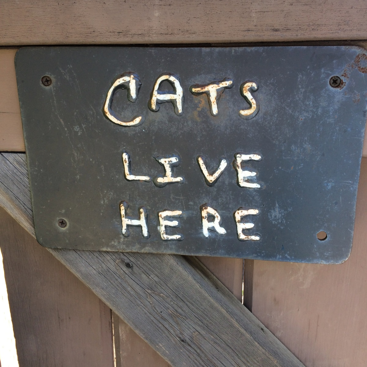 """outdoor sign: """"cats live here"""""""