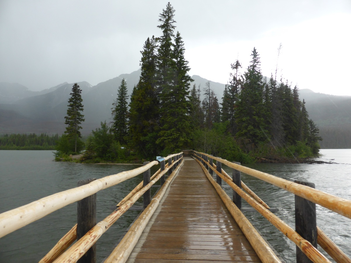 pine trees on an island at the end of a wooden walkway