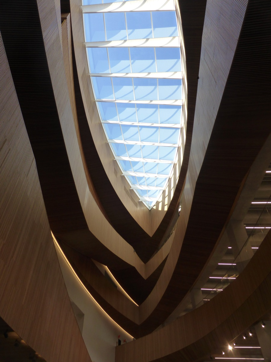 ceiling wood and window at the library