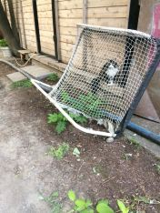 alley goal cat